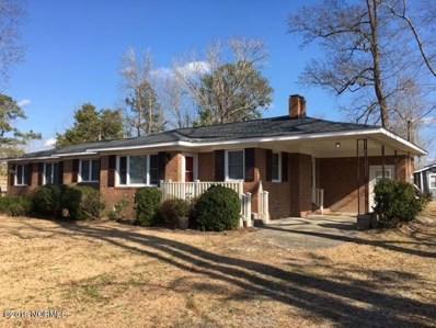 1051 White Road, Williamston, NC 27892 - #: 100141083