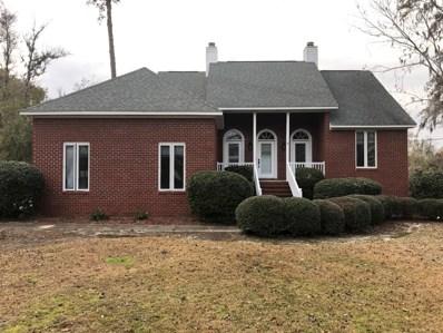 180 Hawks Pond Road, New Bern, NC 28562 - #: 100142541