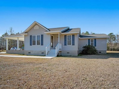 564 Alligator Loop Road, Merritt, NC 28556 - #: 100147116