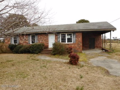 132 W Pine Forest Road, Mount Olive, NC 28365 - #: 100148572