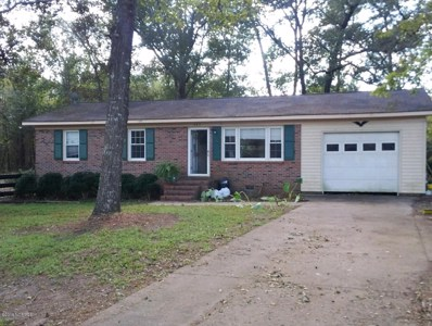 245 Tracy Brown Road, Magnolia, NC 28453 - #: 100152559