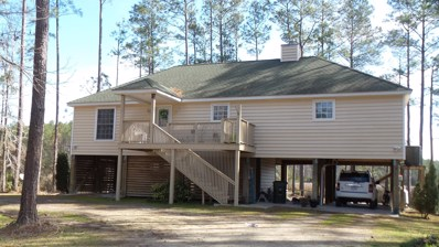 5632 Straight Road, Oriental, NC 28571 - #: 100153785
