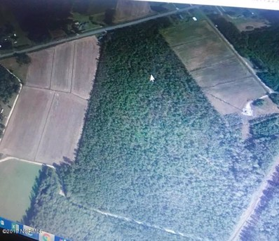 Green Swamp Road N, Bolton, NC 28423 - #: 100162849
