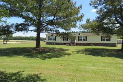 4618 Staton Mill Road, Robersonville, NC 27871 - #: 100165779