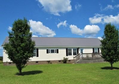 365 Riggs Road, Grantsboro, NC 28529 - #: 100166666