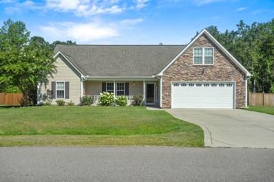 225 Blue Creek Farms Drive, Jacksonville, NC 28540 - #: 100177437