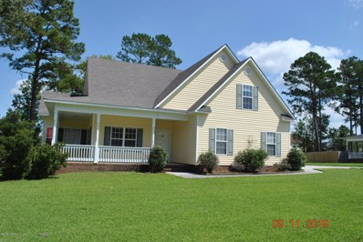 868 Pine Valley Road, Jacksonville, NC 28546 - #: 100184022