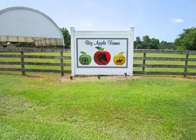 1130 Big Apple Farms Lane, Williamston, NC 27892 - #: 100190143