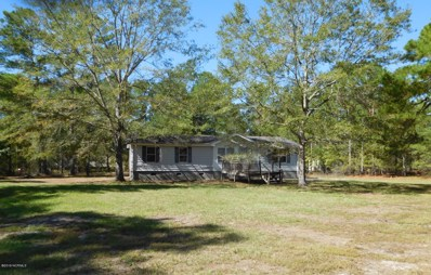 622 Sandy Bend Road, Rocky Point, NC 28457 - #: 100191150