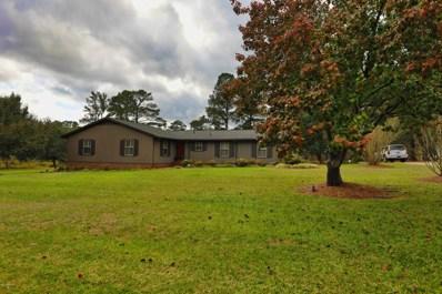 451 Tracy Brown Road, Magnolia, NC 28453 - #: 100191413