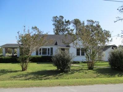 207 Lucille Lewis Drive, Marshallberg, NC 28553 - #: 100192015