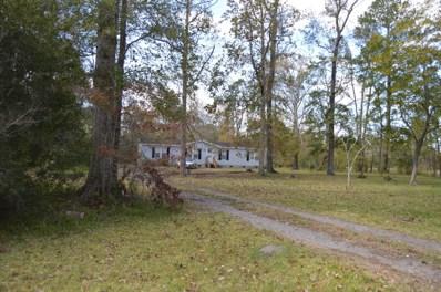 530 Alligator Creek Road, Merritt, NC 28556 - #: 100192740