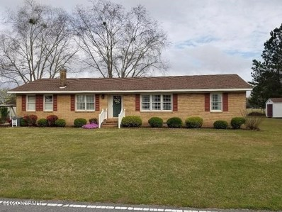 19952 Nc 903, Robersonville, NC 27871 - #: 100210915