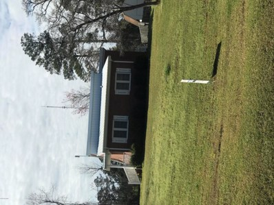 227 Cronly Drive, Delco, NC 28436 - #: 100213529