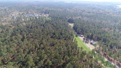 736 Acres Off Shaw Road, Garland, NC 28441 - #: 100216198