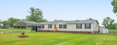 126 Belgrade Extension Ext, Maysville, NC 28555 - #: 100219121