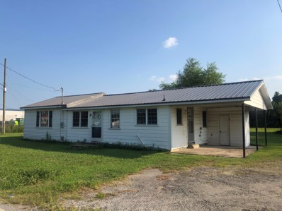 201 County Road, Mount Olive, NC 28365 - #: 100220811
