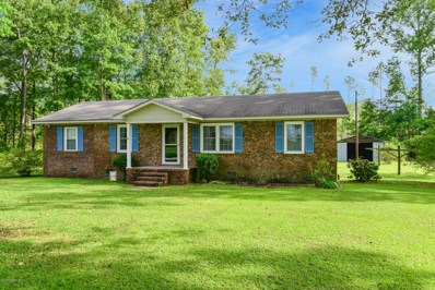 199 Neck B Road, Pantego, NC 27860 - #: 100230071