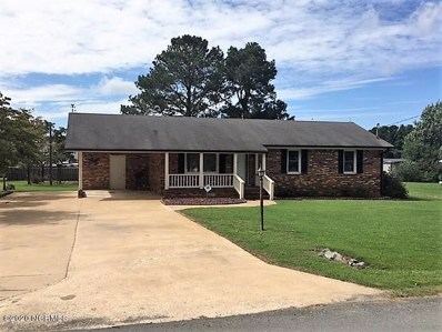 129 E Pine Forest Road, Mount Olive, NC 28365 - #: 100233515