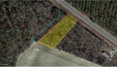 Lot 4 Hwy 55 W, Seven Springs, NC 28578 - #: 100240871