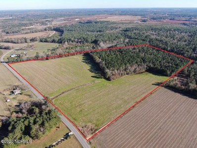 40 Acres Old Fayetteville Road, Garland, NC 28441 - #: 100249029