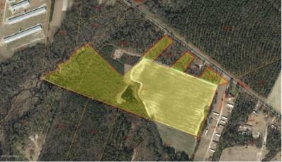30+- Acres Hwy 55 W, Seven Springs, NC 28578 - #: 50121301