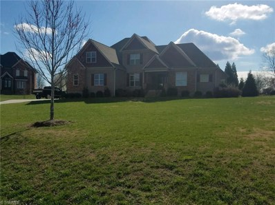 6200 Herons Nest Court, Oak Ridge, NC 27310 - #: 897518
