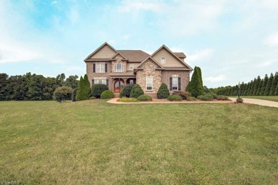 190 Baltimore Downs Road, Advance, NC 27006 - #: 900184