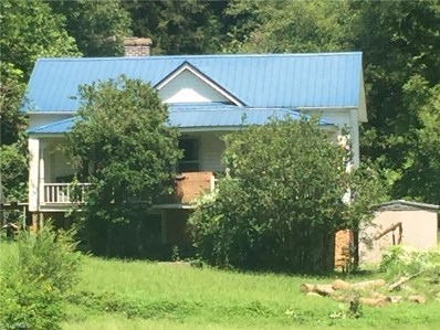 227 E Bend Street, Franklinville, NC 27248 - #: 901083