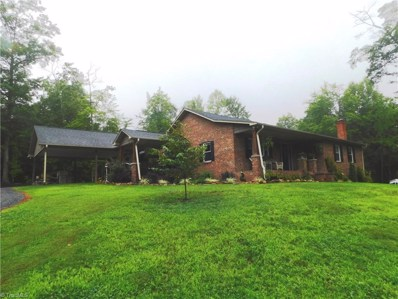 156 Grace Way, Ararat, NC 27007 - #: 911245