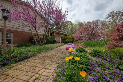 1700 County Home Road, Blanch, NC 27212 - #: 923534