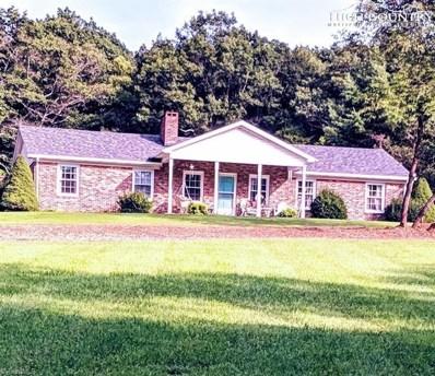 4844 Pine Swamp Road, Sparta, NC 28675 - #: 963536