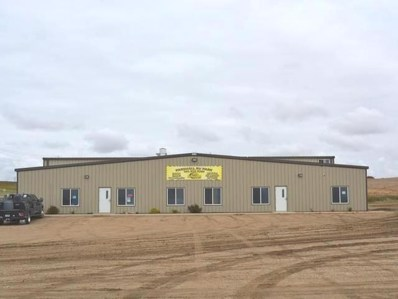 3820 72nd Avenue NW, Parshall, ND 58770 - #: 336212