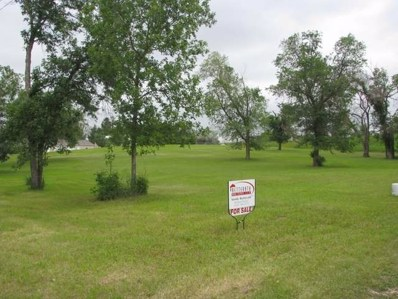 320 2ND Ave Nw, Golden Valley, ND 58541 - #: 337538