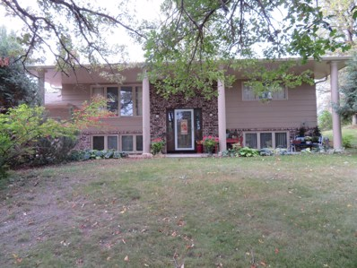 630 E Mill Avenue, Pelican Rapids, MN 56572 - #: 18-1157