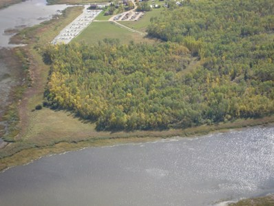 7710 NW Youngs Bay Drive, Angle Inlet, MN 56711 - #: 18-911