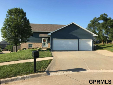 4709 Foxhollow Court, Sioux City, IA 51106 - #: 21814878