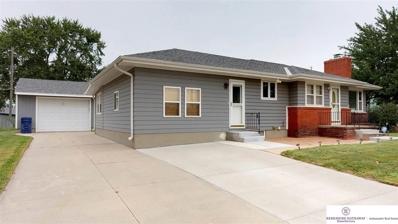310 S Pine Street, Valley, NE 68064 - #: 21815924