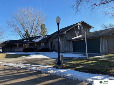 Lot 4 Sundance Lake, Clarks, NE 68628 - #: 22100416