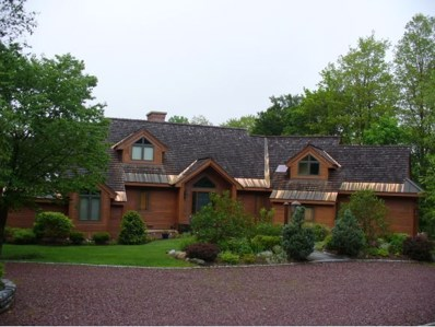 343 High Ridge Road, Killington, VT 05751 - #: 4134898