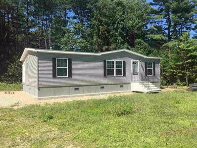 19 Meadows Drive, Hopkinton, NH 03229 - #: 4448722