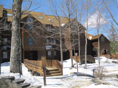 112 High Ridge Rd, D-4, Killington, VT 05751 - #: 4687691