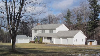 2256 Tinmouth Road, Danby, VT 05739 - #: 4704642