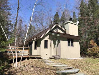 116 Forest Mountain Road, Peru, VT 05152 - #: 4747980