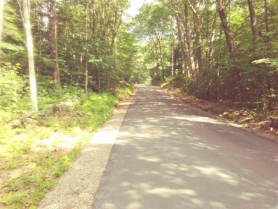 0 West Hill Road, Troy, NH 03465 - #: 4764642