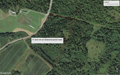 Lot 1 Lost Nation Road, Colebrook, NH 03576 - #: 4769331