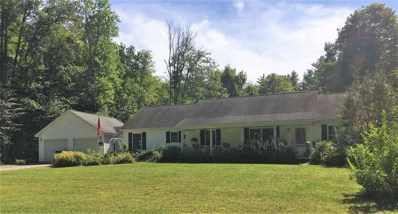 1624 Endless Brook Road, Wells, VT 05774 - #: 4775217