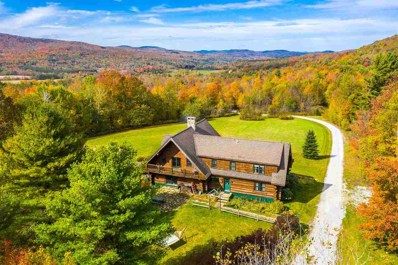 1059 Straight Road, Mount Holly, VT 05730 - #: 4781021