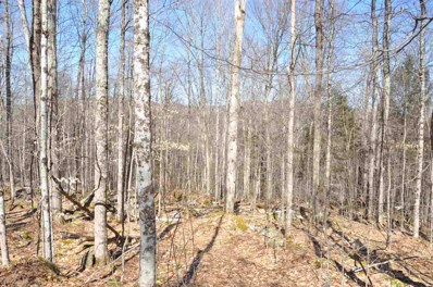 Old Town Road, Ripton, VT 05766 - #: 4798353