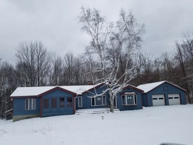 2804 Tinmouth Road, Danby, VT 05739 - #: 4799573
